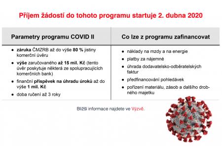 COVID-II_basic